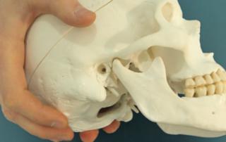 articulaciones temporomandibulares